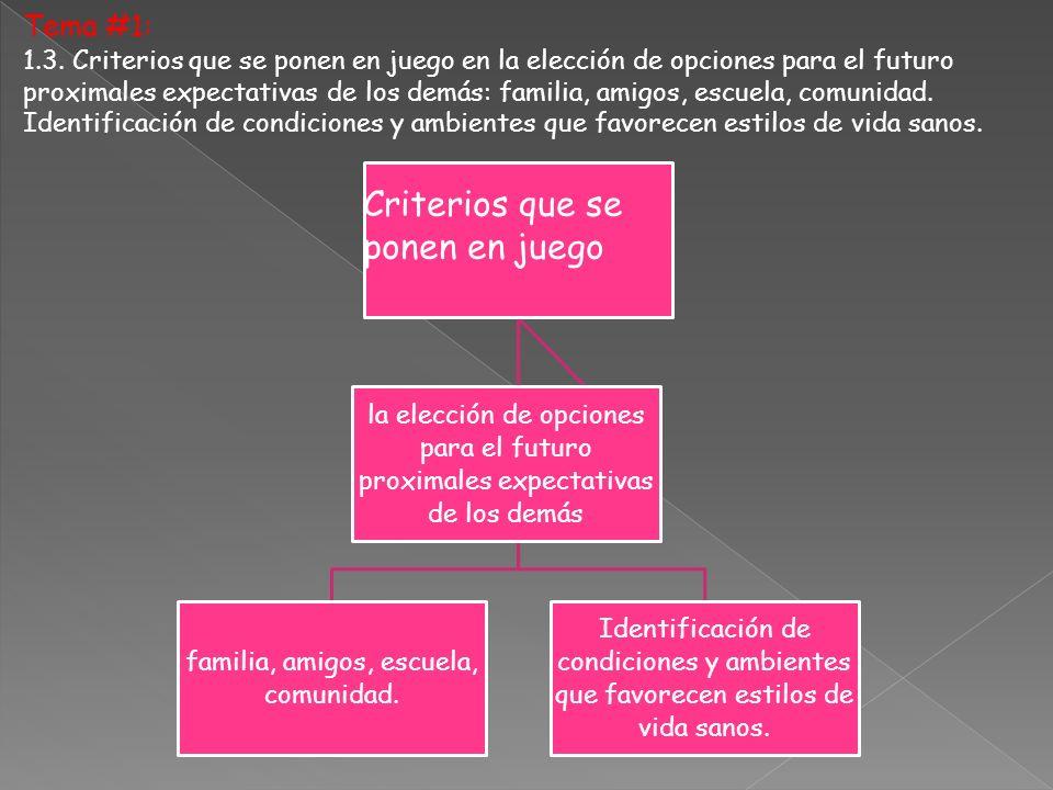 Tema #1: 1.3. Criterios que se ponen en juego en la elección de opciones para el futuro proximales expectativas de los demás: familia, amigos, escuela