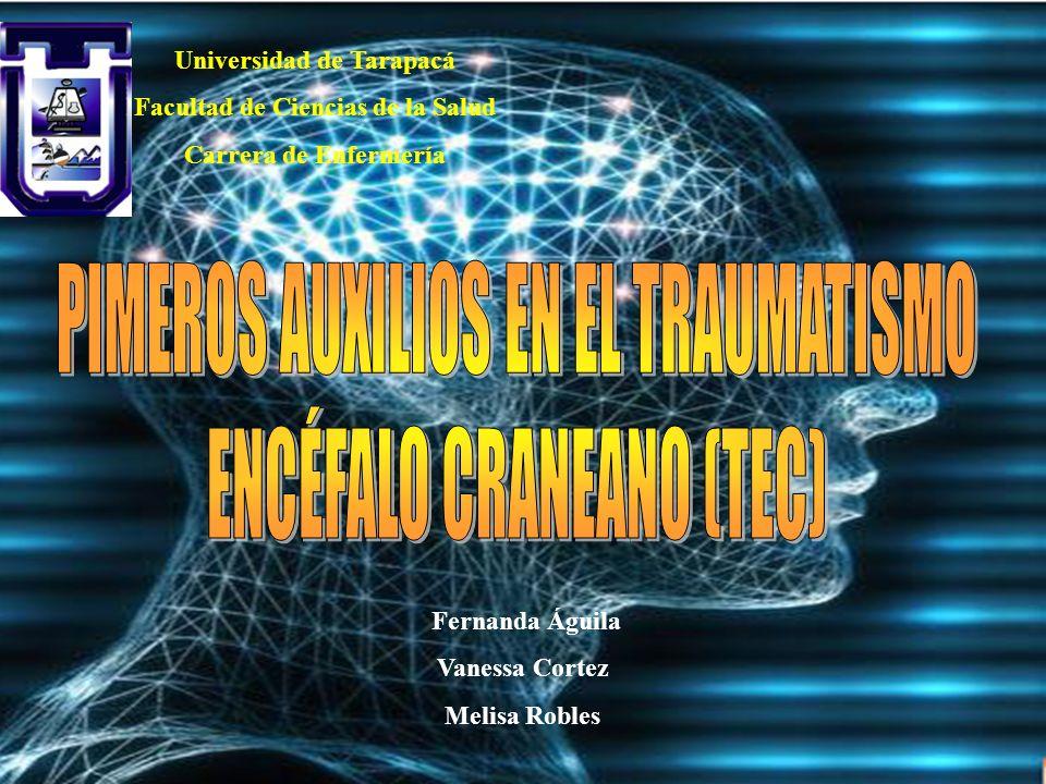 Fernanda Águila Vanessa Cortez Melisa Robles Universidad de Tarapacá Facultad de Ciencias de la Salud Carrera de Enfermería
