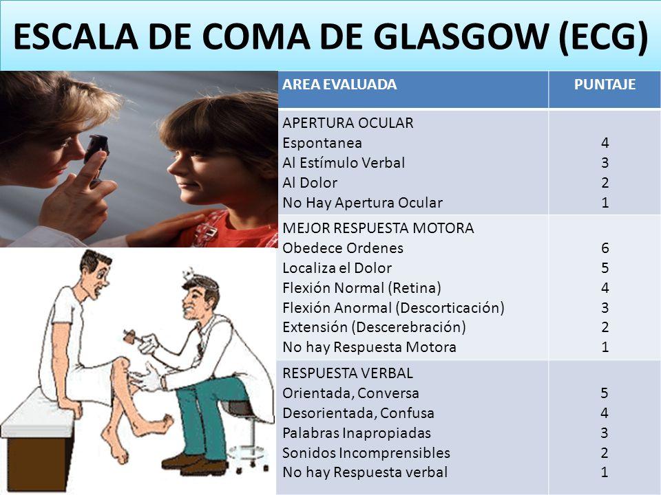 ESCALA DE COMA DE GLASGOW (ECG) AREA EVALUADAPUNTAJE APERTURA OCULAR Espontanea Al Estímulo Verbal Al Dolor No Hay Apertura Ocular 43214321 MEJOR RESP