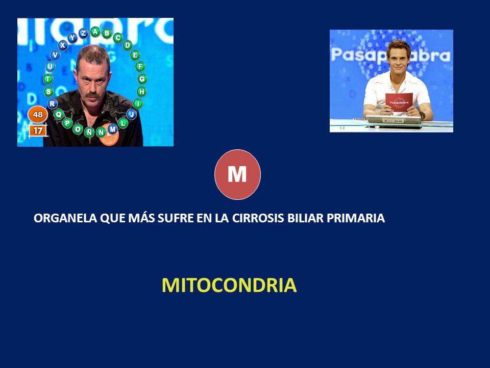 M ORGANELA QUE MÁS SUFRE EN LA CIRROSIS BILIAR PRIMARIA MITOCONDRIA
