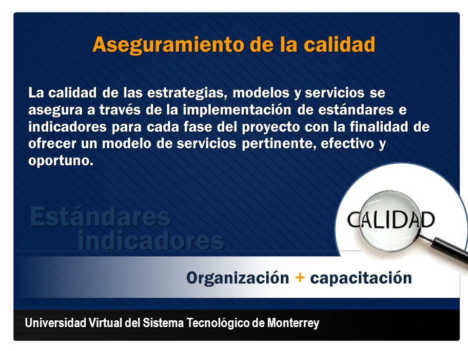 Organización + capacitación Aseguramiento de la calidad La calidad de las estrategias, modelos y servicios se asegura a través de la implementación de