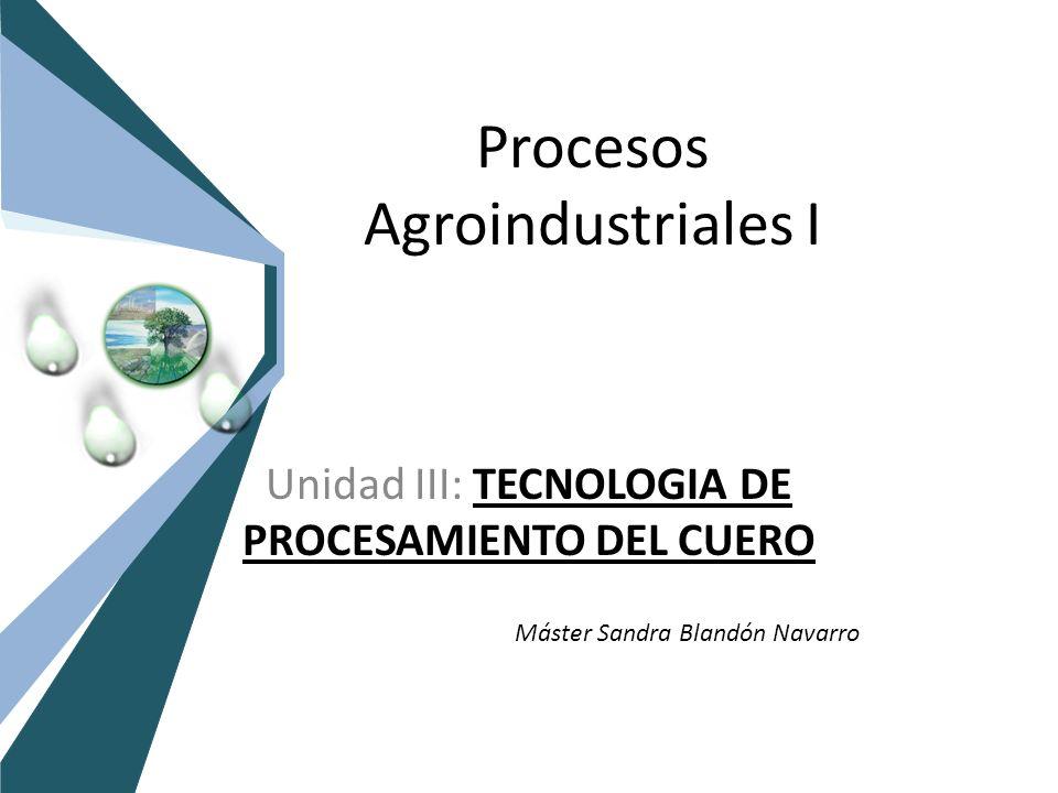 Procesos Agroindustriales I Unidad III: TECNOLOGIA DE PROCESAMIENTO DEL CUERO Máster Sandra Blandón Navarro
