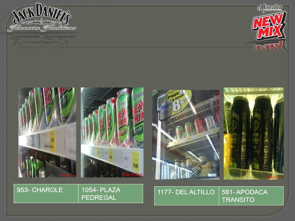 1177- DEL ALTILLO581- APODACA TRANSITO 953- CHAROLE1054- PLAZA PEDREGAL