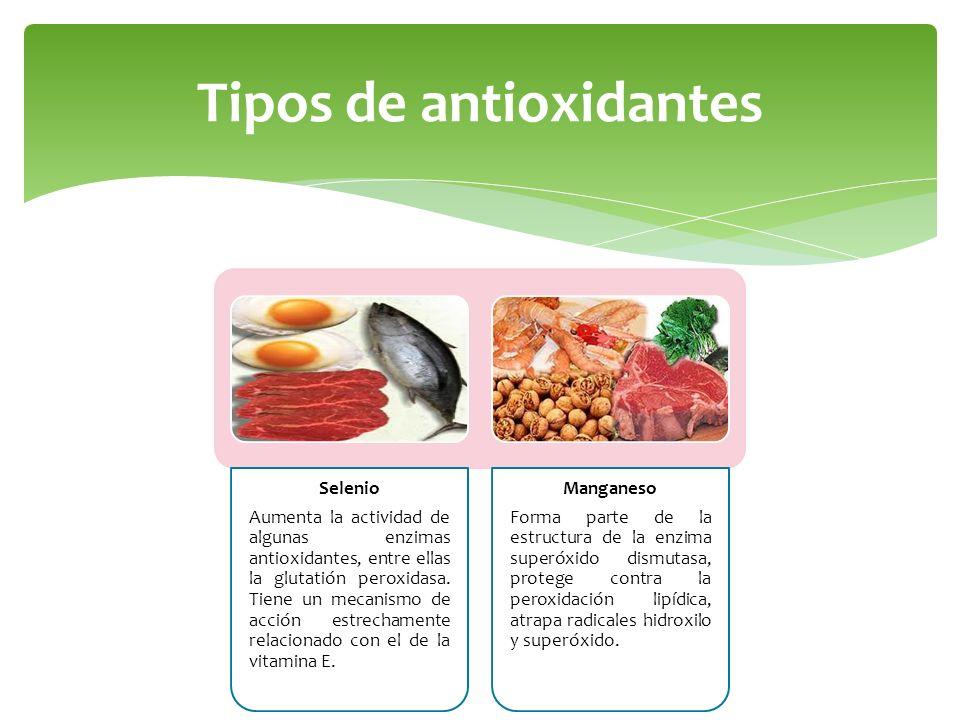 Tipos de antioxidantes Selenio Aumenta la actividad de algunas enzimas antioxidantes, entre ellas la glutatión peroxidasa. Tiene un mecanismo de acció