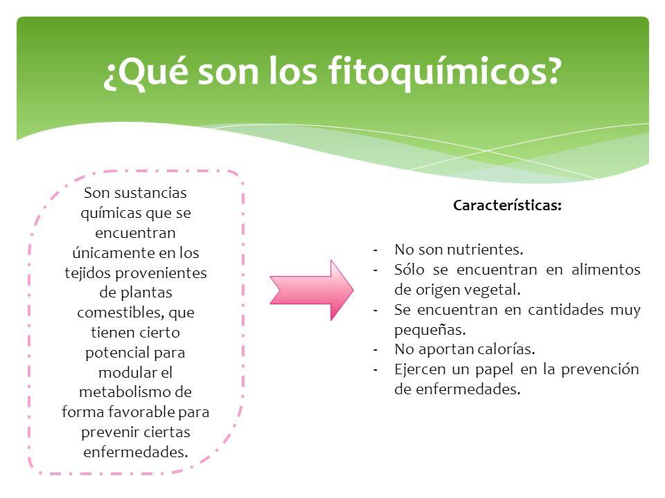¿Qué son los fitoquímicos? Son sustancias químicas que se encuentran únicamente en los tejidos provenientes de plantas comestibles, que tienen cierto