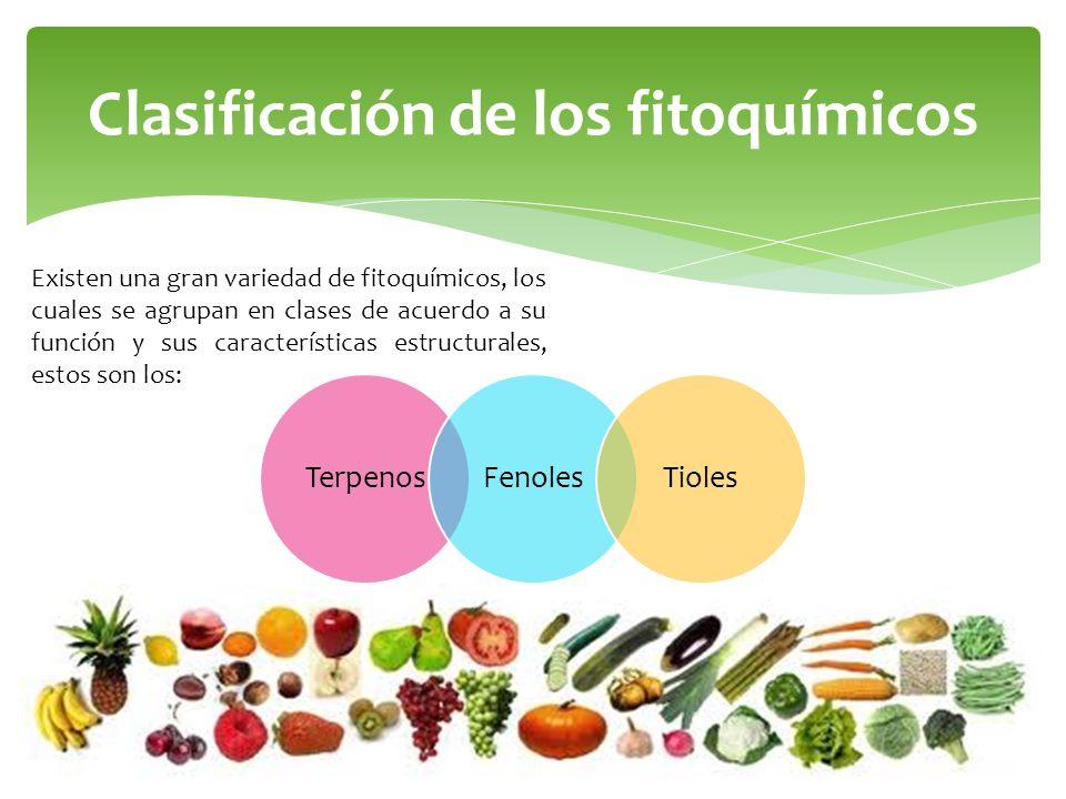 Clasificación de los fitoquímicos Existen una gran variedad de fitoquímicos, los cuales se agrupan en clases de acuerdo a su función y sus característ
