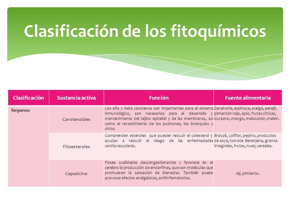 Clasificación de los fitoquímicos ClasificaciónSustancia activaFunciónFuente alimentaria Terpenos Carotenoides Los alfa y beta carotenos son important