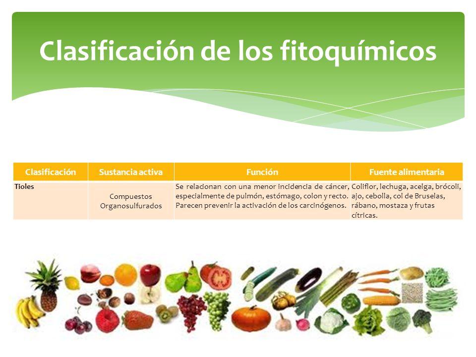 Clasificación de los fitoquímicos ClasificaciónSustancia activaFunciónFuente alimentaria Tioles Compuestos Organosulfurados Se relacionan con una meno