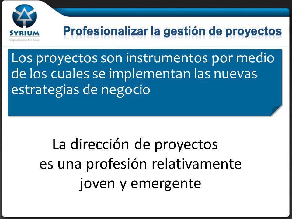 Los proyectos son instrumentos por medio de los cuales se implementan las nuevas estrategias de negocio La dirección de proyectos es una profesión relativamente joven y emergente