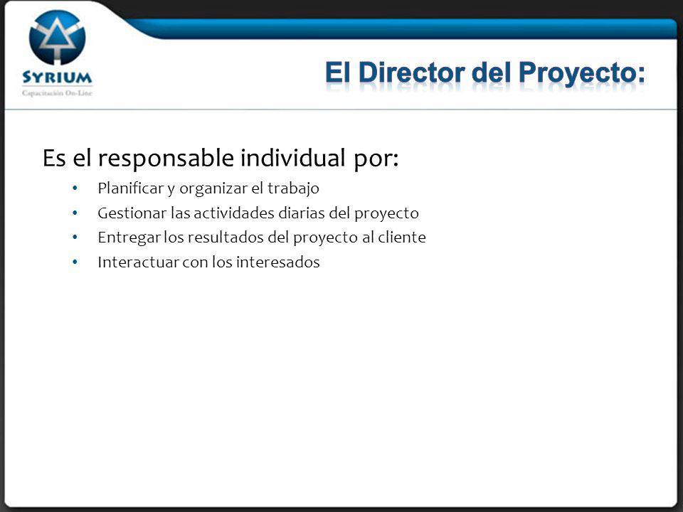 Es el responsable individual por: Planificar y organizar el trabajo Gestionar las actividades diarias del proyecto Entregar los resultados del proyecto al cliente Interactuar con los interesados