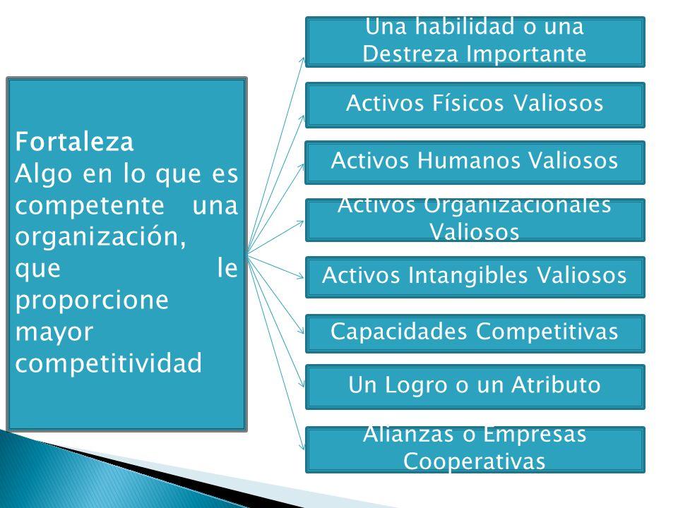 Fortaleza Algo en lo que es competente una organización, que le proporcione mayor competitividad Una habilidad o una Destreza Importante Activos Físic