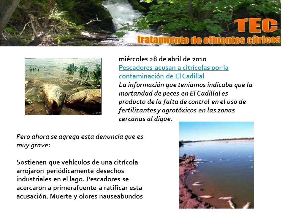 miércoles 28 de abril de 2010 Pescadores acusan a citrícolas por la contaminación de El Cadillal La información que teníamos indicaba que la mortandad