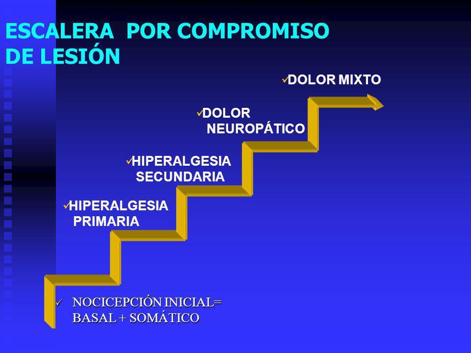 ESCALERA POR COMPROMISO DE LESIÓN NOCICEPCIÓN INICIAL= BASAL + SOMÁTICO NOCICEPCIÓN INICIAL= BASAL + SOMÁTICO DOLOR MIXTO DOLOR NEUROPÁTICO HIPERALGESIA SECUNDARIA HIPERALGESIA PRIMARIA