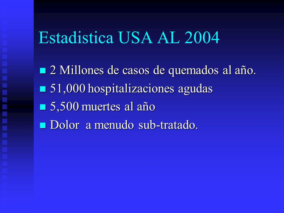 Estadistica USA AL 2004 2 Millones de casos de quemados al año.