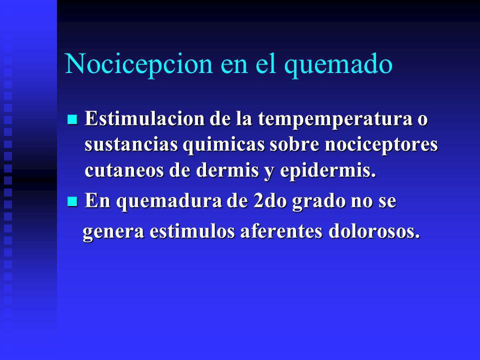 Nocicepcion en el quemado Estimulacion de la tempemperatura o sustancias quimicas sobre nociceptores cutaneos de dermis y epidermis.
