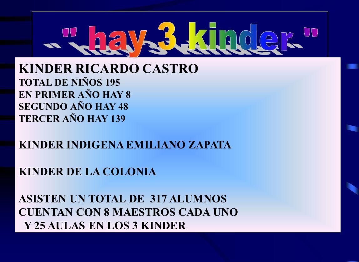 KINDER RICARDO CASTRO TOTAL DE NIÑOS 195 EN PRIMER AÑO HAY 8 SEGUNDO AÑO HAY 48 TERCER AÑO HAY 139 KINDER INDIGENA EMILIANO ZAPATA KINDER DE LA COLONIA ASISTEN UN TOTAL DE 317 ALUMNOS CUENTAN CON 8 MAESTROS CADA UNO Y 25 AULAS EN LOS 3 KINDER