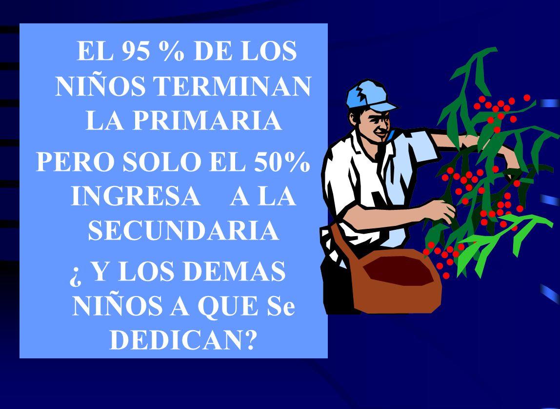 EL 95 % DE LOS NIÑOS TERMINAN LA PRIMARIA PERO SOLO EL 50% INGRESA A LA SECUNDARIA ¿ Y LOS DEMAS NIÑOS A QUE Se DEDICAN?
