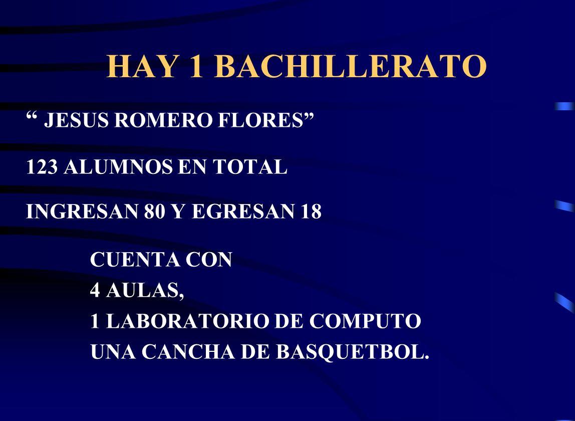 HAY 1 BACHILLERATO JESUS ROMERO FLORES 123 ALUMNOS EN TOTAL INGRESAN 80 Y EGRESAN 18 CUENTA CON 4 AULAS, 1 LABORATORIO DE COMPUTO UNA CANCHA DE BASQUETBOL.