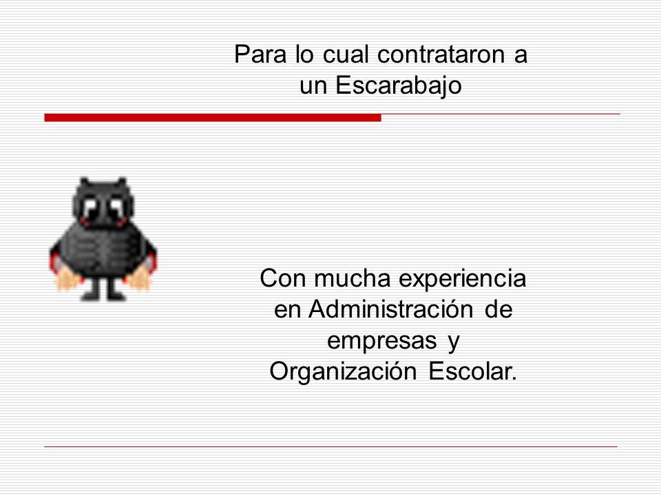 Para lo cual contrataron a un Escarabajo Con mucha experiencia en Administración de empresas y Organización Escolar.