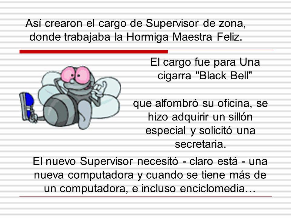 Así crearon el cargo de Supervisor de zona, donde trabajaba la Hormiga Maestra Feliz.