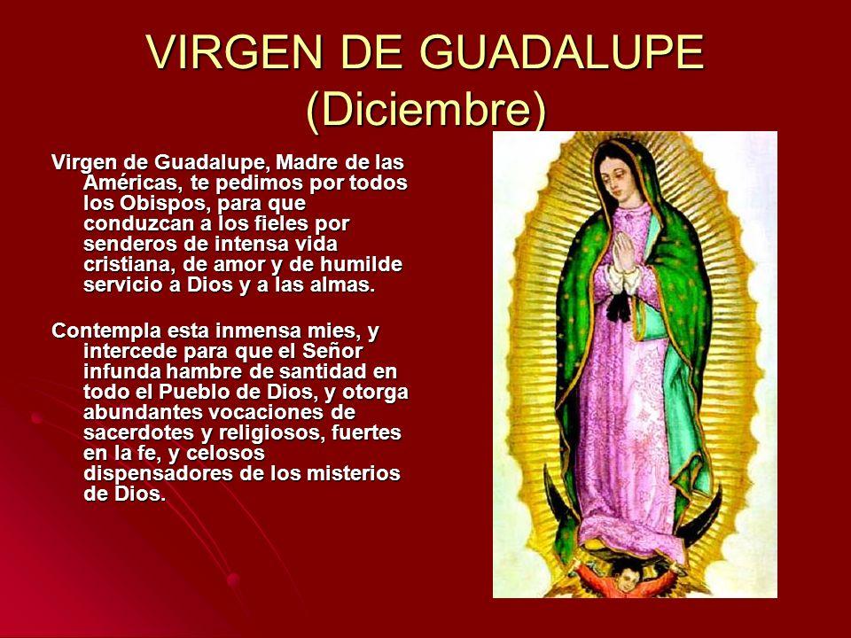 VIRGEN DE GUADALUPE (Diciembre) Virgen de Guadalupe, Madre de las Américas, te pedimos por todos los Obispos, para que conduzcan a los fieles por send