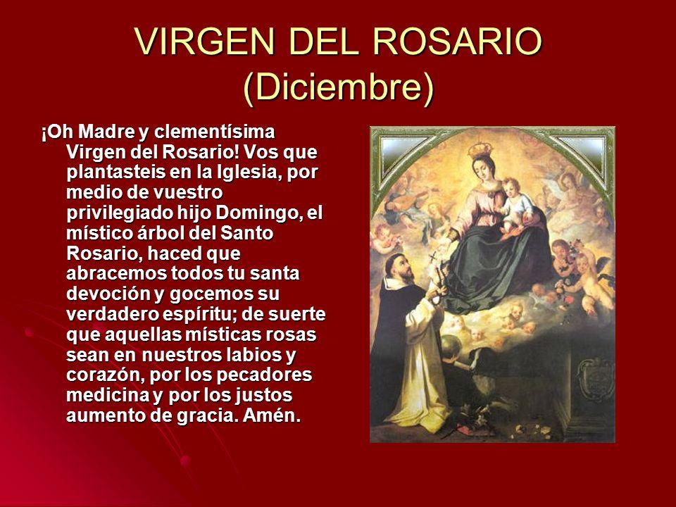 VIRGEN DEL ROSARIO (Diciembre) ¡Oh Madre y clementísima Virgen del Rosario! Vos que plantasteis en la Iglesia, por medio de vuestro privilegiado hijo