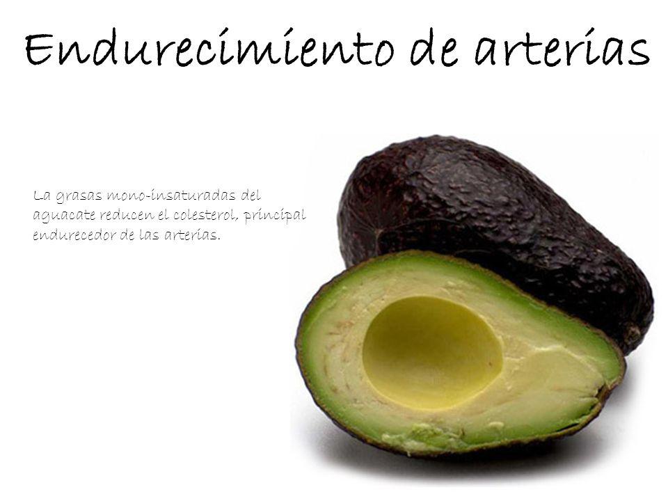 Endurecimiento de arterias La grasas mono-insaturadas del aguacate reducen el colesterol, principal endurecedor de las arterias.