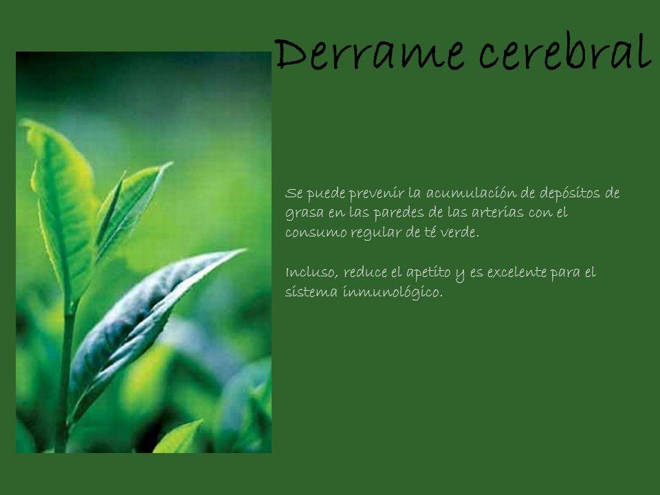 Derrame cerebral Se puede prevenir la acumulación de depósitos de grasa en las paredes de las arterias con el consumo regular de té verde. Incluso, re
