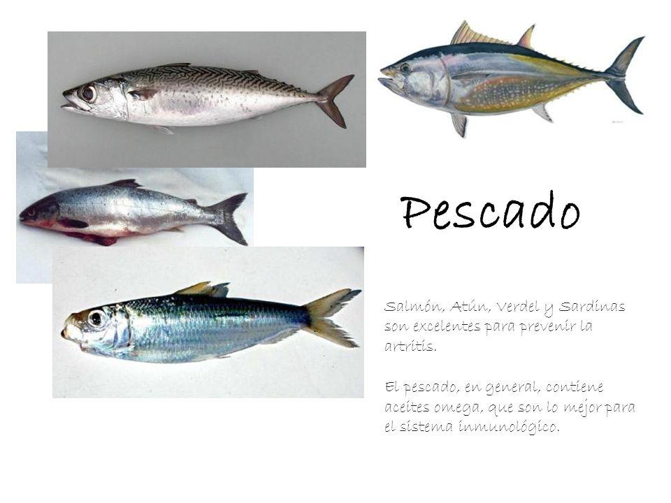 Pescado Salmón, Atún, Verdel y Sardinas son excelentes para prevenir la artritis. El pescado, en general, contiene aceites omega, que son lo mejor par