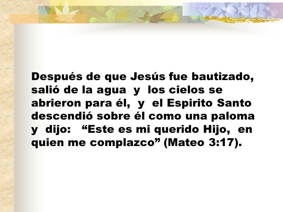 Después de que Jesús fue bautizado, salió de la agua y los cielos se abrieron para él, y el Espirito Santo descendió sobre él como una paloma y dijo: