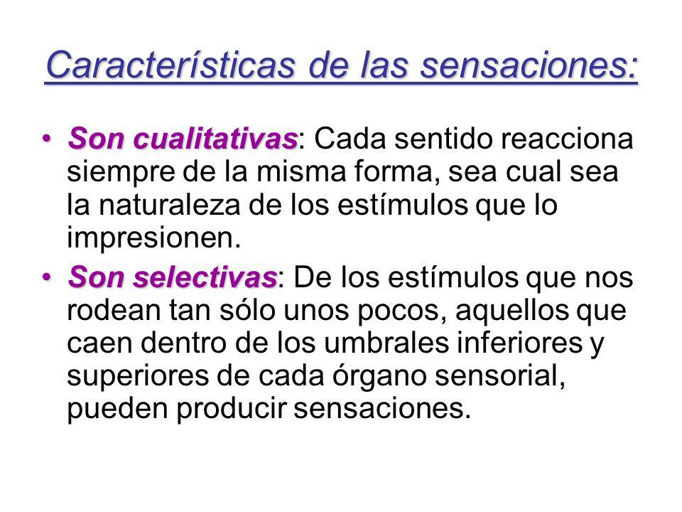 Características de las sensaciones: Son cualitativasSon cualitativas: Cada sentido reacciona siempre de la misma forma, sea cual sea la naturaleza de