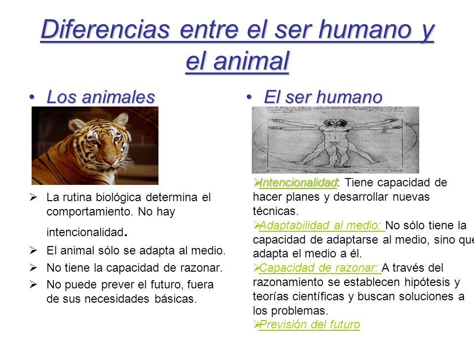 Diferencias entre el ser humano y el animal Los animalesLos animales La rutina biológica determina el comportamiento. No hay intencionalidad. El anima