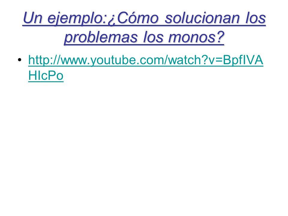 Un ejemplo:¿Cómo solucionan los problemas los monos? http://www.youtube.com/watch?v=BpfIVA HIcPohttp://www.youtube.com/watch?v=BpfIVA HIcPo