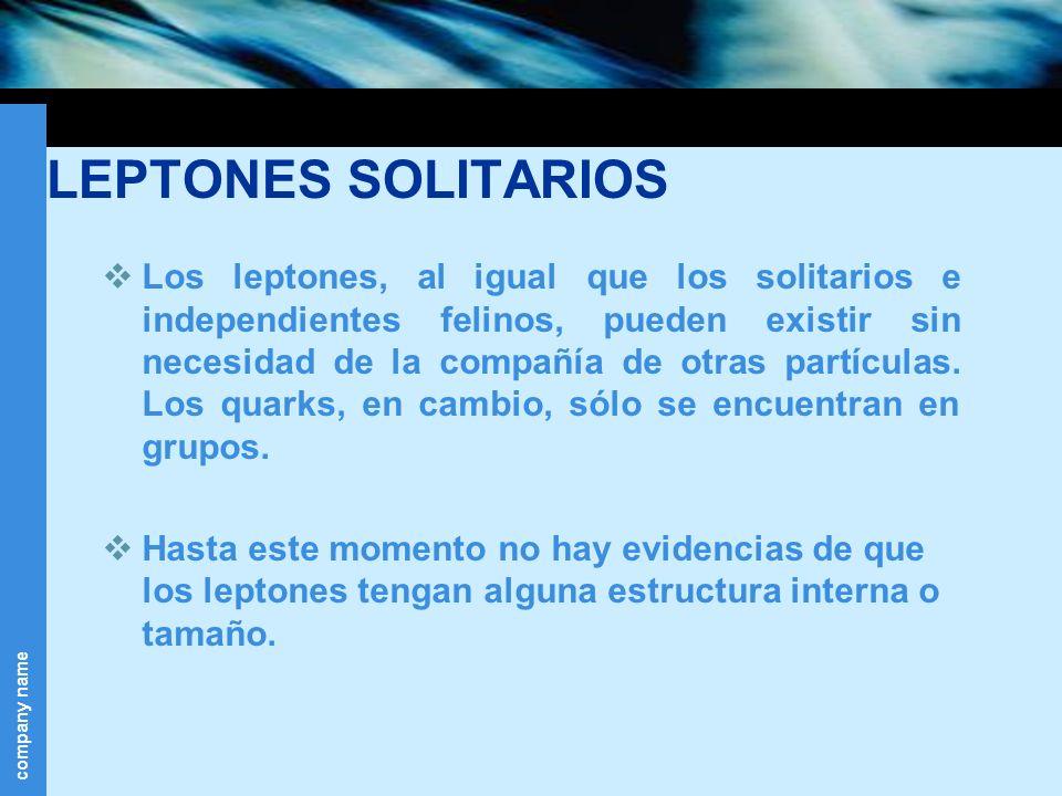 company name LEPTONES SOLITARIOS Los leptones, al igual que los solitarios e independientes felinos, pueden existir sin necesidad de la compañía de ot