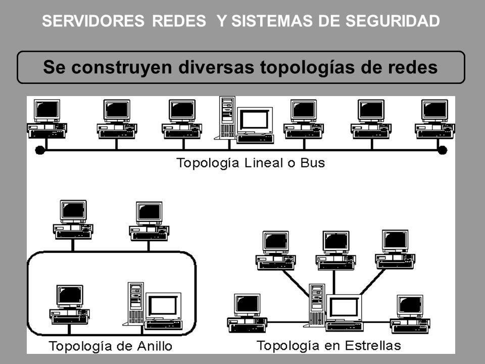 Se construyen diversas topologías de redes SERVIDORES REDES Y SISTEMAS DE SEGURIDAD