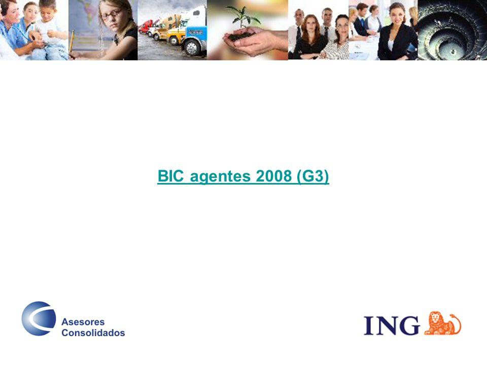 BIC agentes 2008 (G3)