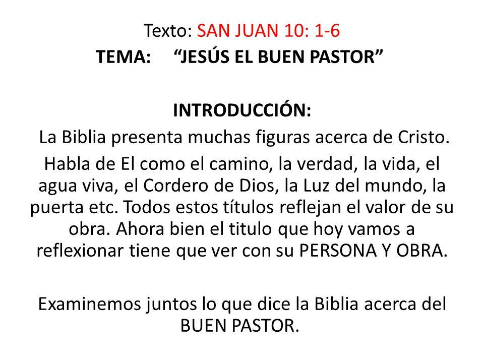 VII.JESÚS COMO PASTOR CONOCE A SUS OBEJAS Y ELLAS TAMBIÉN LO CONOCEN.
