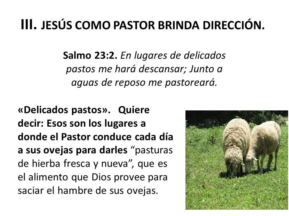 Y además dice el texto: « Junto a aguas de reposo me pastoreará ».