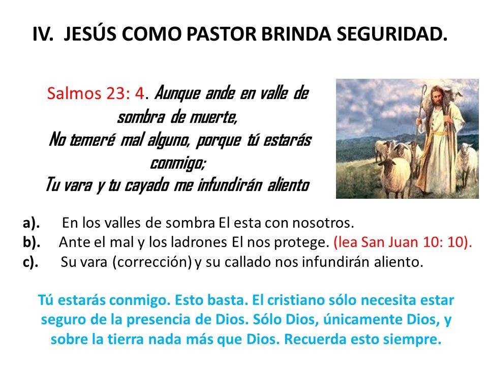 V.JESÚS COMO PASTOR NOS BRINDA CARIÑO Y TERNURA. Isaías 40: 11.