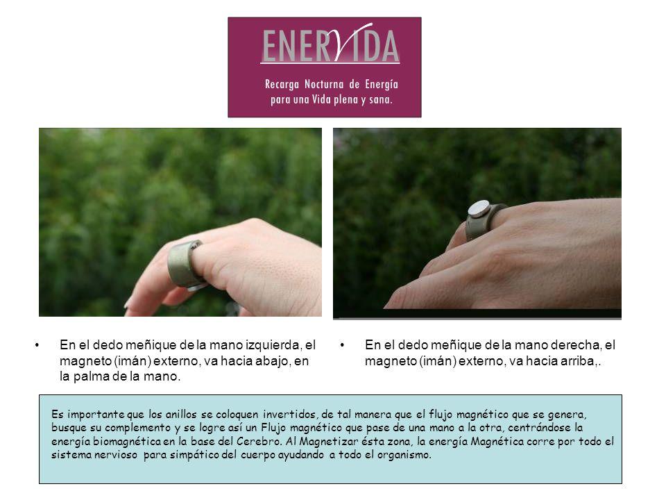 En el dedo meñique de la mano izquierda, el magneto (imán) externo, va hacia abajo, en la palma de la mano. En el dedo meñique de la mano derecha, el