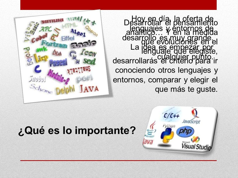 Hoy en día, la oferta de lenguajes y entornos de desarrollo es muy grande.