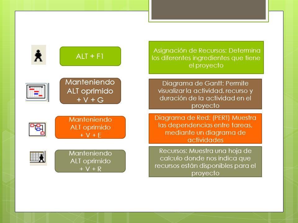 Manteniendo ALT oprimido + V + E Manteniendo ALT oprimido + V + R Diagrama de Red: (PERT) Muestra las dependencias entre tareas, mediante un diagrama de actividades Recursos: Muestra una hoja de calculo donde nos indica que recursos están disponibles para el proyecto ALT + F1 Asignación de Recursos: Determina los diferentes ingredientes que tiene el proyecto Manteniendo ALT oprimido + V + G Diagrama de Gantt: Permite visualizar la actividad, recurso y duración de la actividad en el proyecto