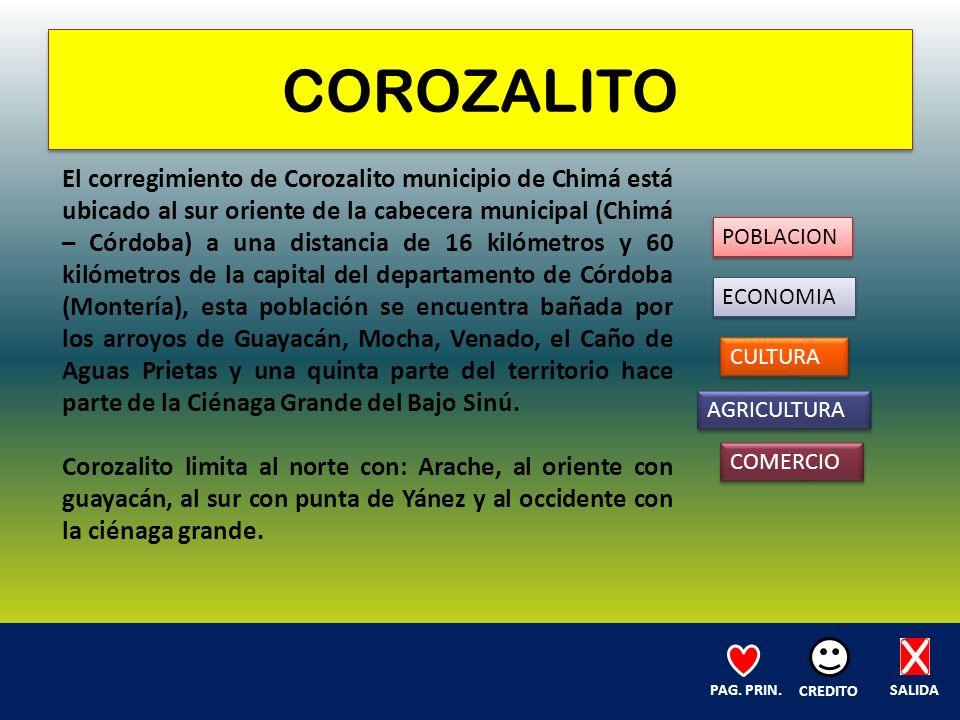 COROZALITO POBLACION ECONOMIA CULTURA AGRICULTURA COMERCIO El corregimiento de Corozalito municipio de Chimá está ubicado al sur oriente de la cabecera municipal (Chimá – Córdoba) a una distancia de 16 kilómetros y 60 kilómetros de la capital del departamento de Córdoba (Montería), esta población se encuentra bañada por los arroyos de Guayacán, Mocha, Venado, el Caño de Aguas Prietas y una quinta parte del territorio hace parte de la Ciénaga Grande del Bajo Sinú.