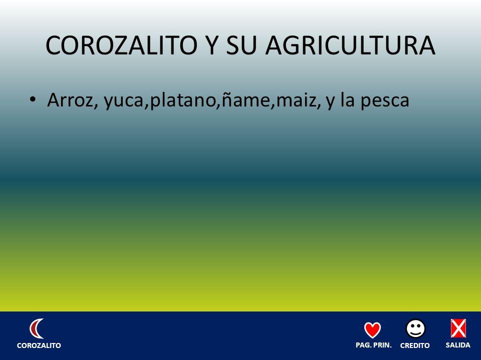 COROZALITO Y SU AGRICULTURA Arroz, yuca,platano,ñame,maiz, y la pesca SALIDA CREDITO PAG.