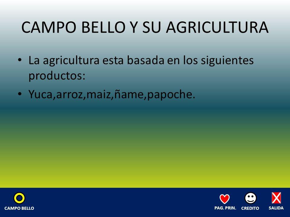 CAMPO BELLO Y SU AGRICULTURA La agricultura esta basada en los siguientes productos: Yuca,arroz,maiz,ñame,papoche.