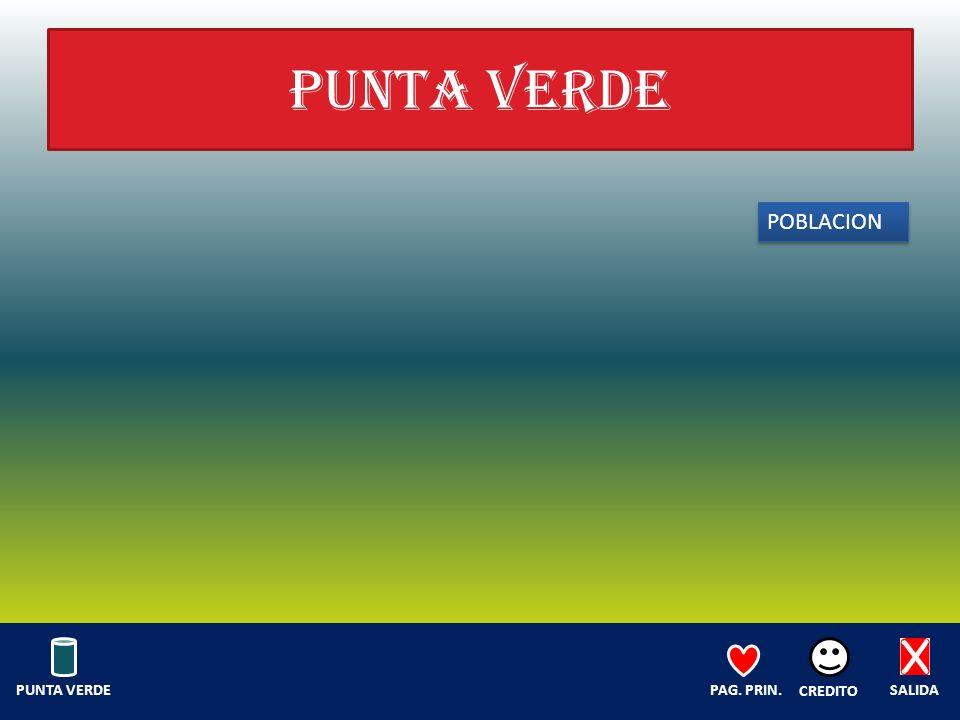 PUNTA VERDE POBLACION SALIDA CREDITO PAG. PRIN.PUNTA VERDE