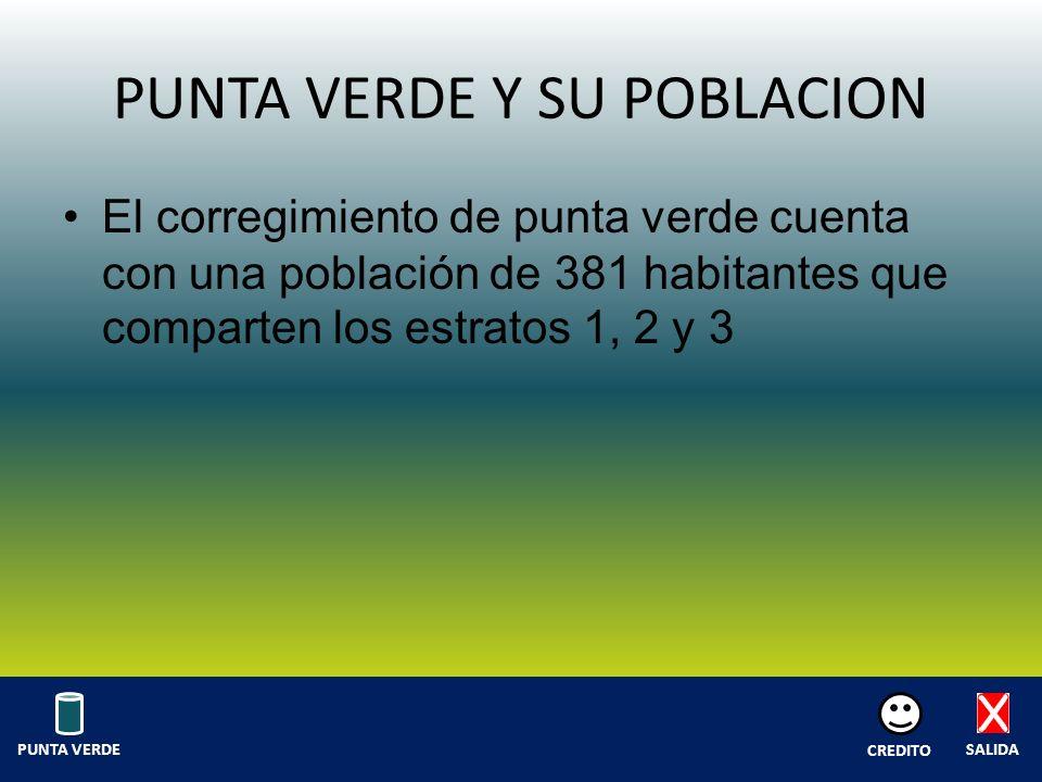 PUNTA VERDE Y SU POBLACION El corregimiento de punta verde cuenta con una población de 381 habitantes que comparten los estratos 1, 2 y 3 SALIDA CREDITO PUNTA VERDE