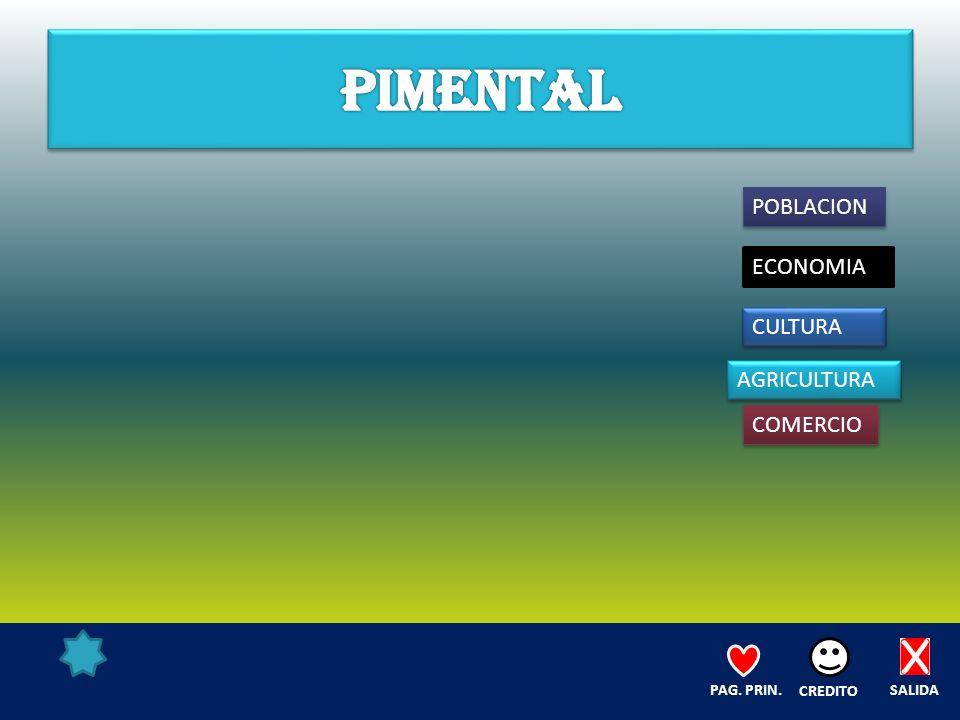 POBLACION ECONOMIA CULTURA AGRICULTURA COMERCIO SALIDA CREDITO PAG. PRIN.