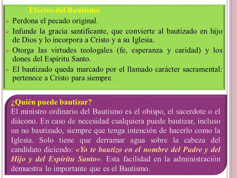Efectos del Bautismo Perdona el pecado original. Infunde la gracia santificante, que convierte al bautizado en hijo de Dios y lo incorpora a Cristo y