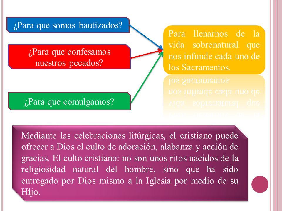 ¿Para que somos bautizados? ¿Para que confesamos nuestros pecados? ¿Para que comulgamos? Mediante las celebraciones litúrgicas, el cristiano puede ofr
